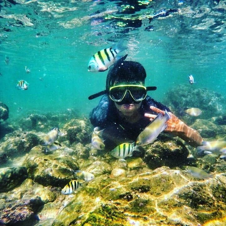 Pantai Nglambor: Tempat Asik untuk Menikmati Keindahan Biota Laut